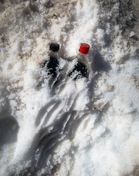 Keeping the Coke cold, mountain style