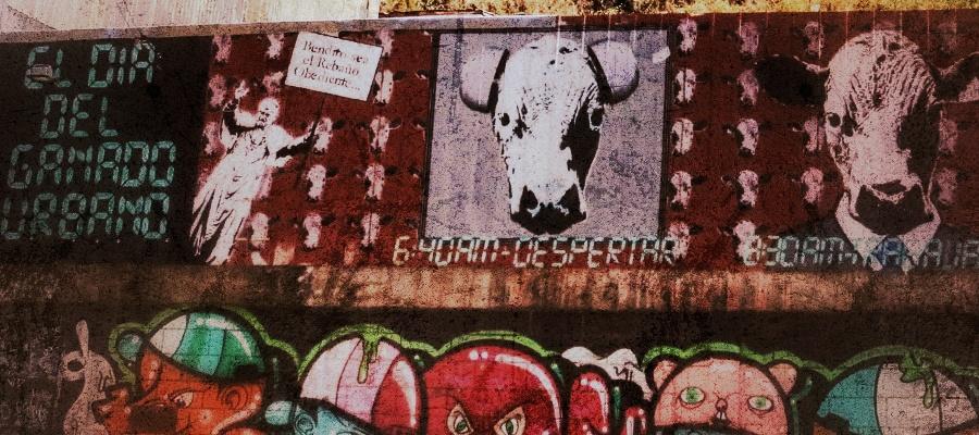 valaparaiso-street-art_