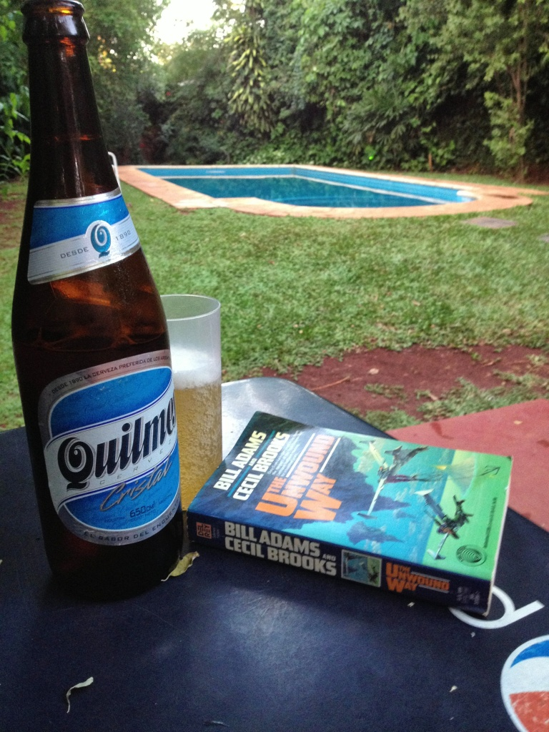 Swimming pool + beer + book = more impressive than pretty much any waterfall